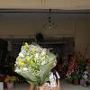 Handbouquet Tulips 11217