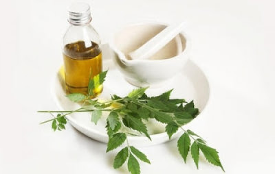 Neem Oil for hair care,  Hair Care Tips | Hair care with easy home Remedies