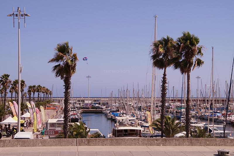 Barcelona Hafen Mittelmeer Palmen Sommerurlaub Spanien Sehenswürdigkeiten Reisetipps