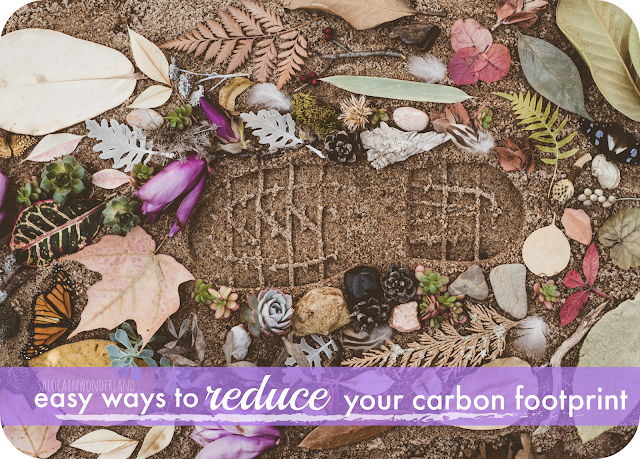 easy ways to reduce your carbon footprint at home