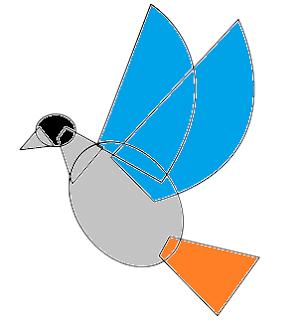 sketsa gambar hiasan burung www.simplenews.me