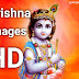 Krishna images 2020 and best Krishna photos for WhatsApp and Facebook