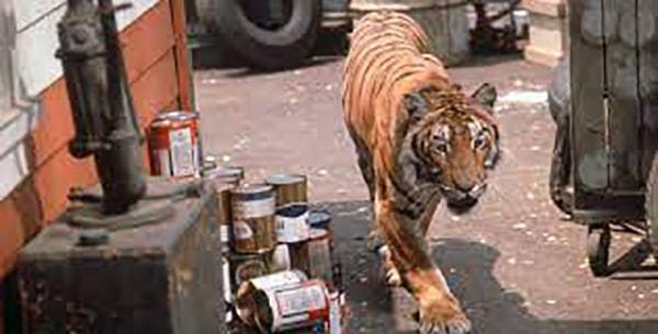 A Tiger Walks (1964)