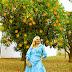 Look Nº 679  - The Orange Trees Orchard!