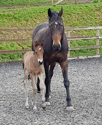 Saffie and her Little Man