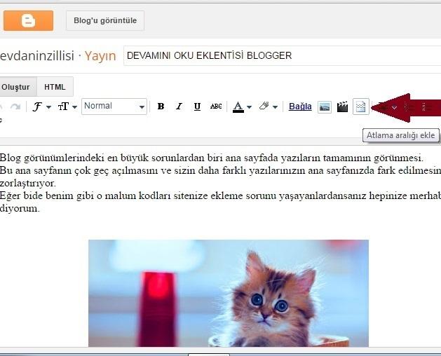 Blogger Devamını oku butonu
