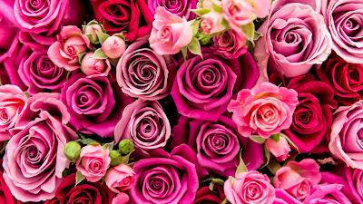 Awal Kisah Hari Valentine