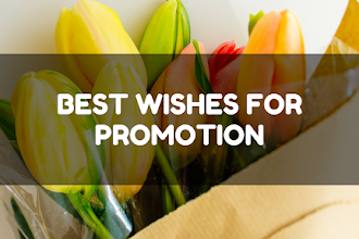 60+ Congratulations Messages for Promotion | Wishes for Promotion