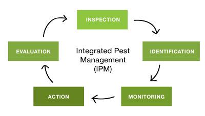 Integrated Pest Management (IPM): Principle, Essentials, Plant resistances and Culture methods