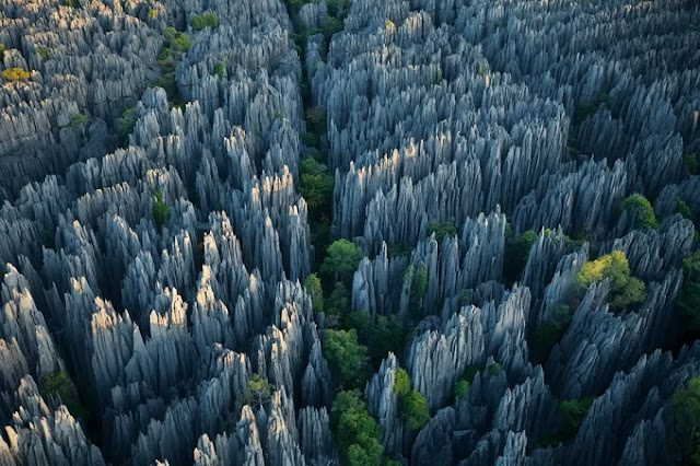 The stone forest is sharp as razor