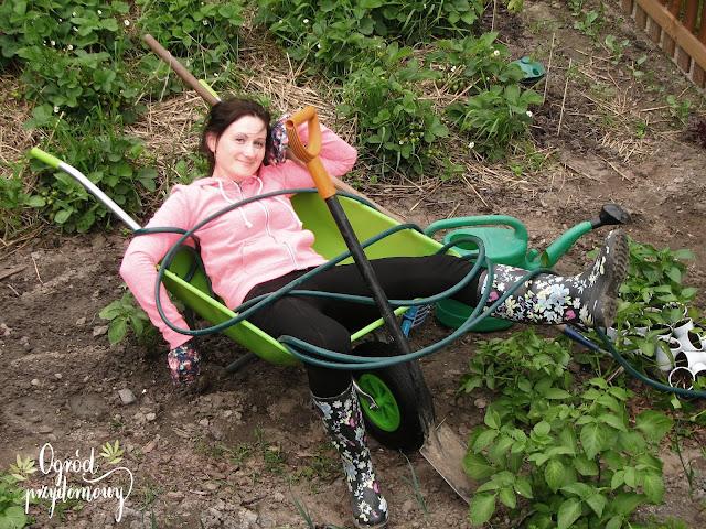 praca w ogrodzie, praca ogrodowa, ogród przydomowy