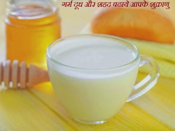 गर्म दूध और शहद बढाये आपके शुक्राणु