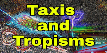 Taxis and tropism, What is taxis? What is tropism? What is kinesis? What is kinetic response? What is taxic response? What is tropic response? Klinotaxis, Tropotaxis, Telotaxis, Menotaxis, Mnemotaxis, phototropism, phototaxis chemotaxis rheotaxis