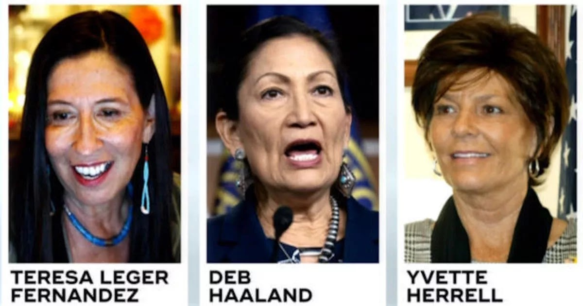 Record Number Of Native American Women Were Elected To Congress In The 2020 US Elections