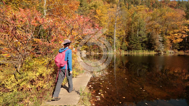 Canada: The Laurentians near Montreal
