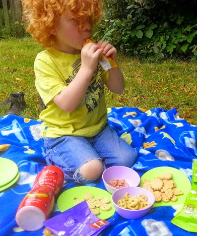 Green Toys Recycled Plastic Cookware And Dining Set Review picnic
