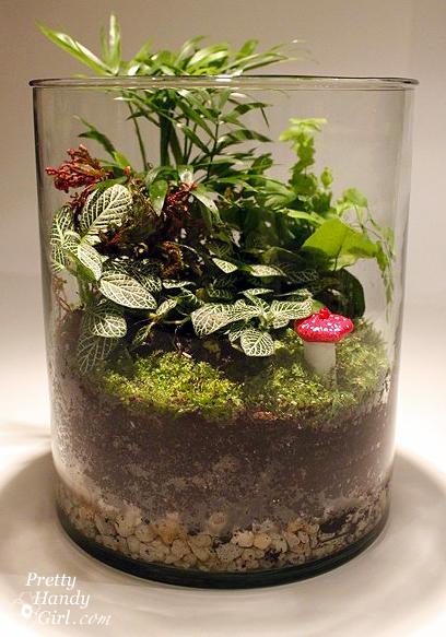 Como hacer un terrario for Peceras de jardin
