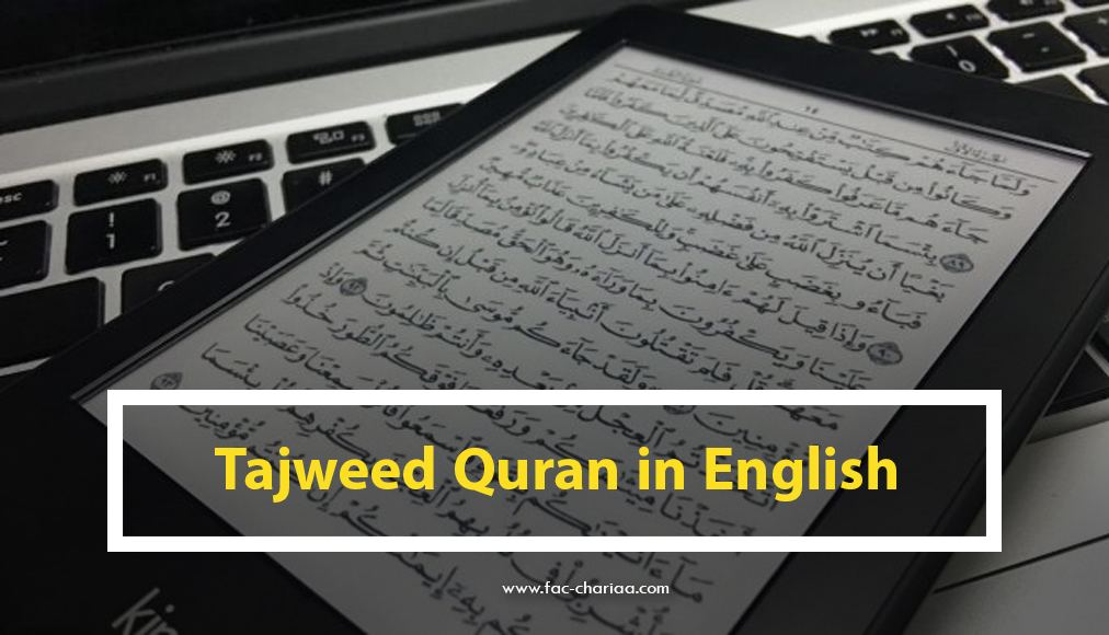 Colored Tajweed Quran with meanings translation in English PDF
