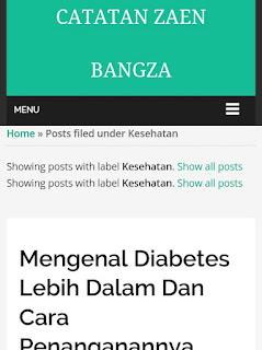 Mengatasi Error Pada Zett Blogger Theme.