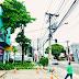 Prefeitura de Eunápolis remove árvore que oferecia risco à população