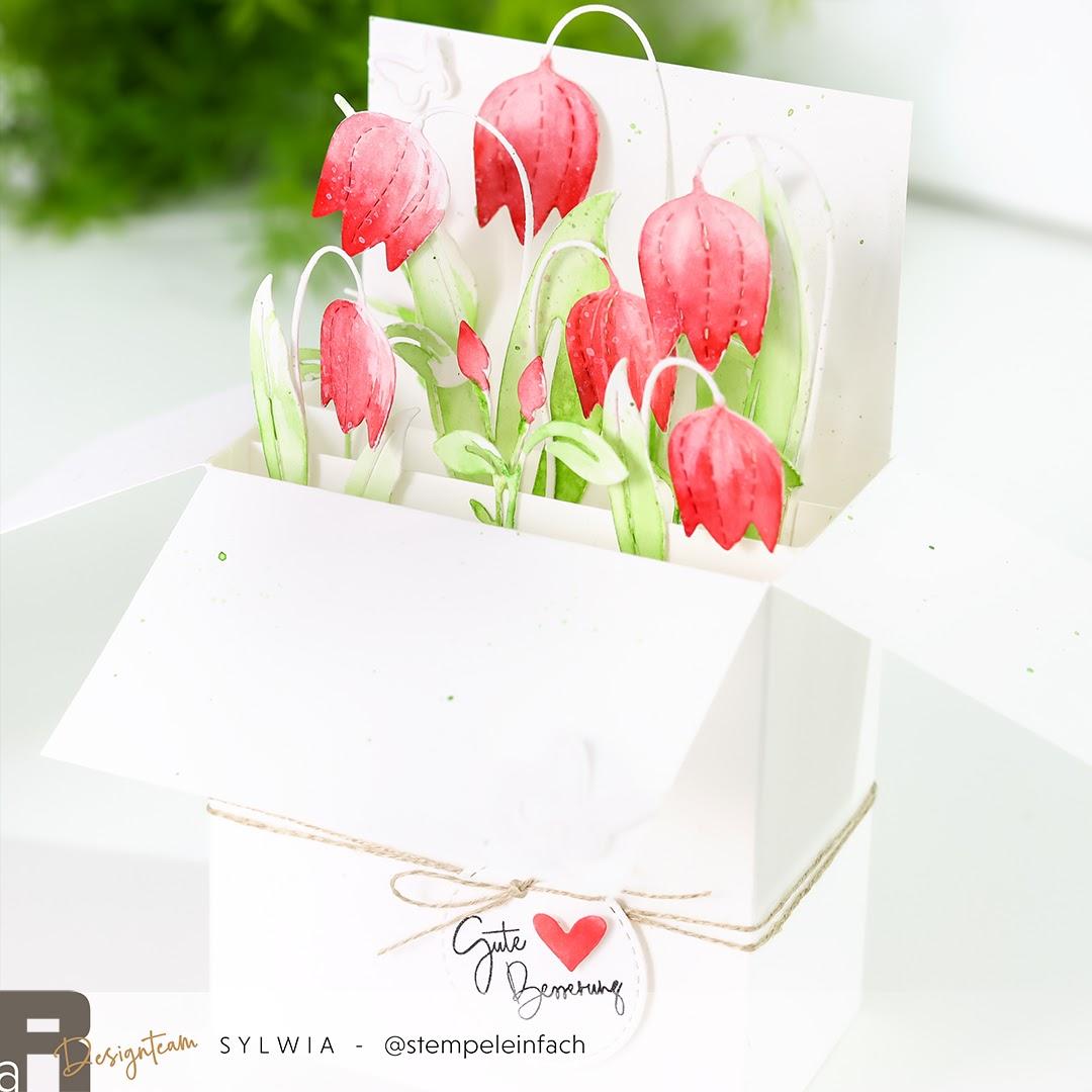 Illarius-card in a box-renke