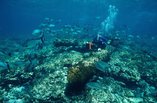 Searchers narrowing in on lost Dutch treasure ship off Western Australia