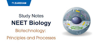Biotechnology: Principles and Processes