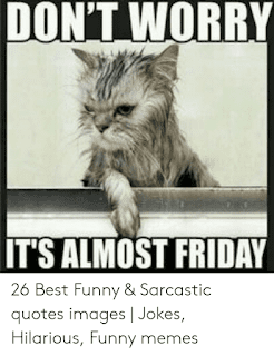 Best Memes About Funny Sarcastic Quotes