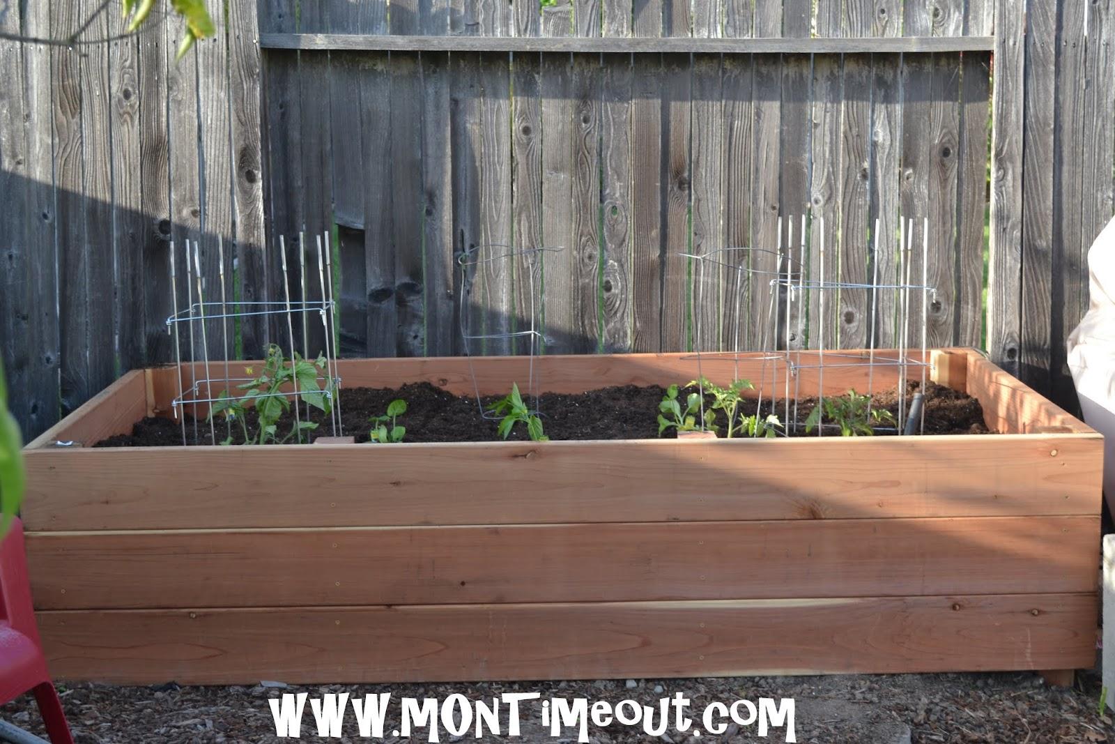 Building Planter Box