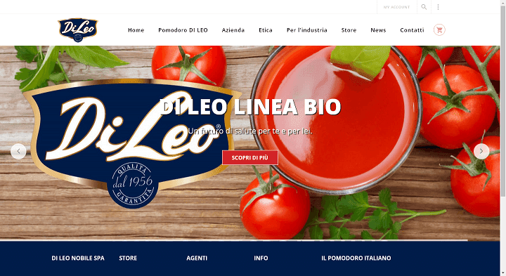 Picture to Italian food exporter company named Di Leo Nobile Spa