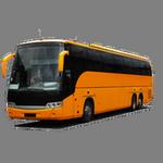 bus in spanish