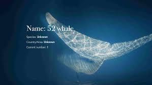 Image of 52 Wale