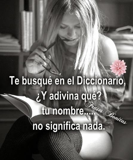 Te busqué en el Diccionario, ¿Y adivina qué? tu nombre no significa nada.