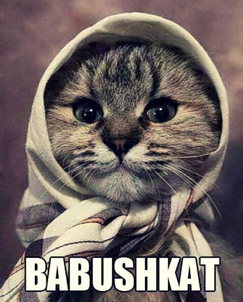 Funny & cute Babushkat