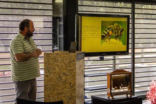 Workshop O Mundo das Abelhas-Festa dos Maios, na Quinta do Pisão