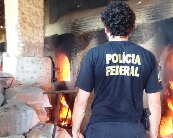 PF destrói 1,6 tonelada de drogas apreendidas no Ceará em 6 meses de operações