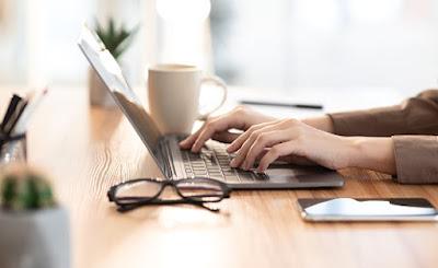 bisnis penulis web blog