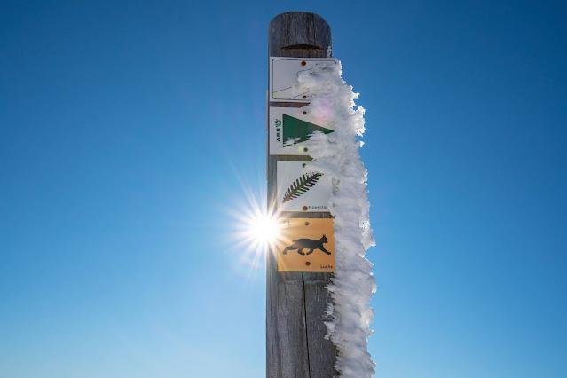 Wanderung auf den Lusen  Winterwandern im Nationalpark Bayerischer Wald 16