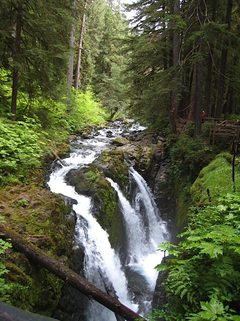 Pacific Northwest Seasons Exploring Western Olympic