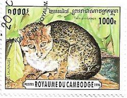 Selo Gato-de-cabeça-chata