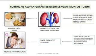 Asupan Garam dan Imunitas