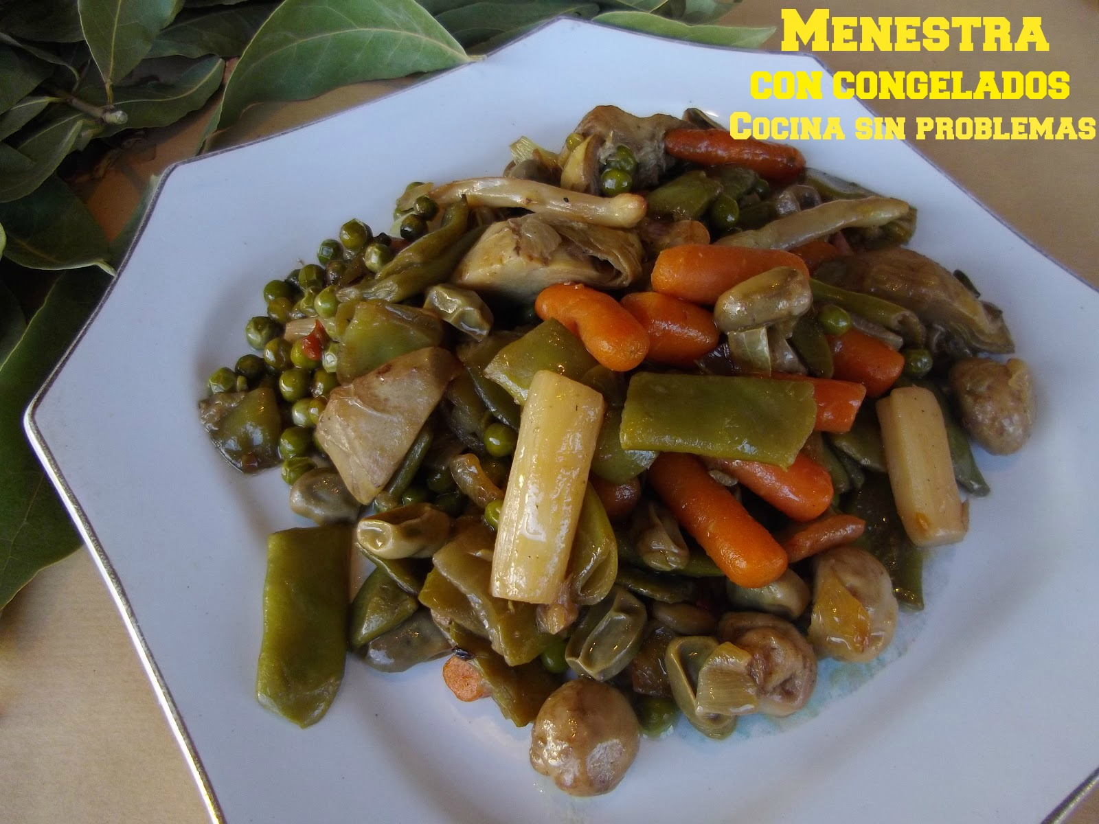 Cocina sin problemas menestra de verduras con congelados - Menestra de verduras en texturas ...