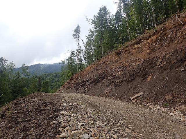 Górska droga w ukraińskich Karpatach.