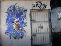 Bondi Street Art   Jake Graham