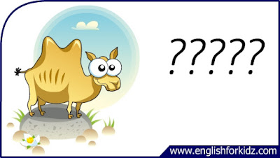 camel flashcard, cartoon camel image, esl flashcard