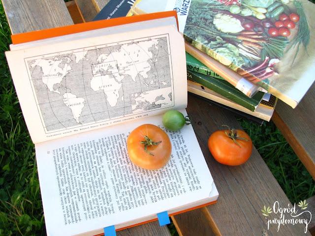 historia warzyw w Polsce, historia warzyw, w Polsce, ogród przydomowy