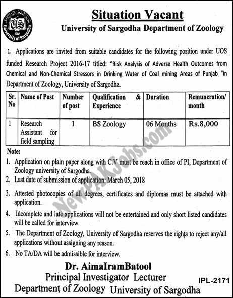 Situation Vacant in University of Sargodha Department of Zoology UOS Latest Jobs 2018