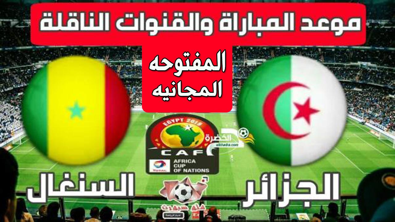 بث مباشر مباراة الجزائر والسنغال يلاشوت كوره لايف