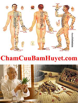 ChamCuuBamHuyet.com