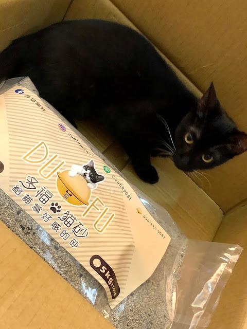 多福貓砂無粉塵快速凝結網路高評價礦砂推薦